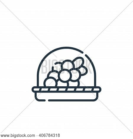 grapes icon isolated on white background from vegan food collection. grapes icon thin line outline l