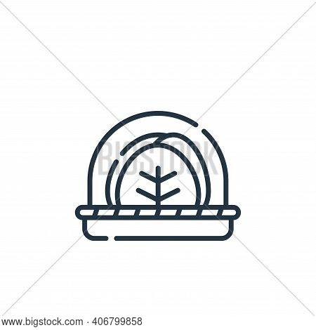cabbage icon isolated on white background from vegan food collection. cabbage icon thin line outline