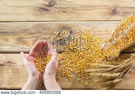 Young Girls Hands Are Joined And In Them There Are A Lot Of Corn Kernels. Wooden Old Table Top As A