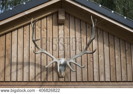 Deer Antlers As A Hunting Trophy On A Building Front