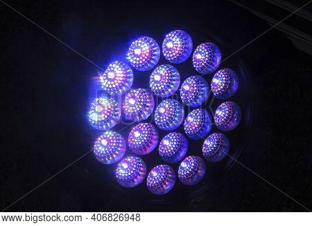 Purple Colored Halogen Headlights, Light Design