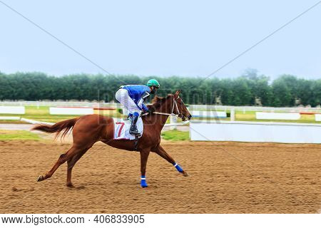 Horse With Jockey Rides Fast On A Racetrack On A Summer Day Background Blurred Traffic