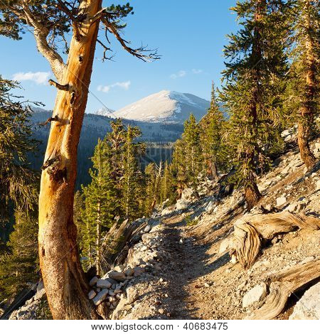 John Muir Trail & Pacific Crest Trail in the Sierra Nevada California USA poster