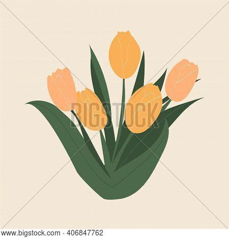 Five Elegant Yellow Tulips. Bouquet Of Hand Drawn Tulips. International Women's Day. 8 March. Botani