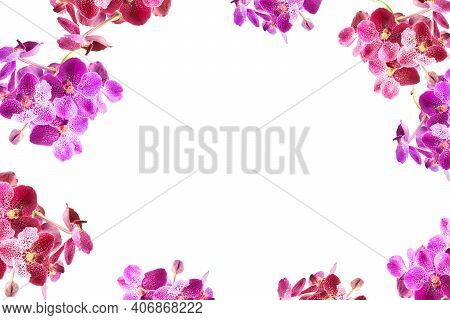 Purple Orchid Flowers Border Frame With White Copy Space.