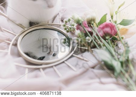 Beautiful Kitty Reflected In Mirror On Background Of Soft Fabric With Flowers. Gentle Image. Eye Sha