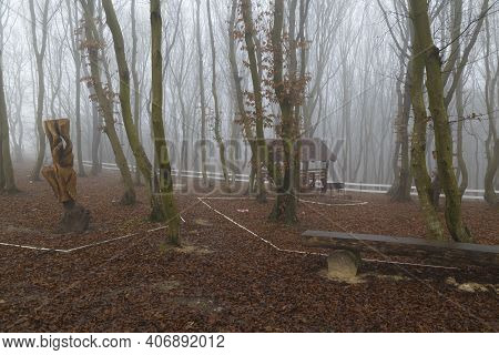 Mystical Dense Fog In The Autumn Forest. Empty Tourist Resting Place. Foggy Day In The Woods.  Misty