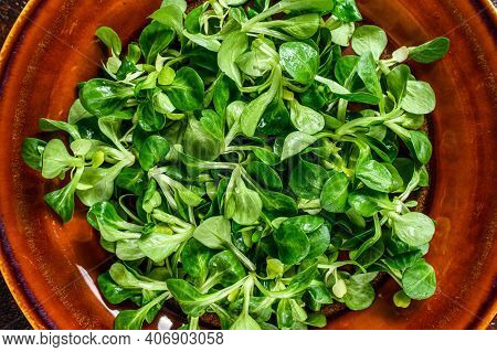 Fresh Green Corn Salad Leaves On A Rustic Plate. Dark Background. Top View