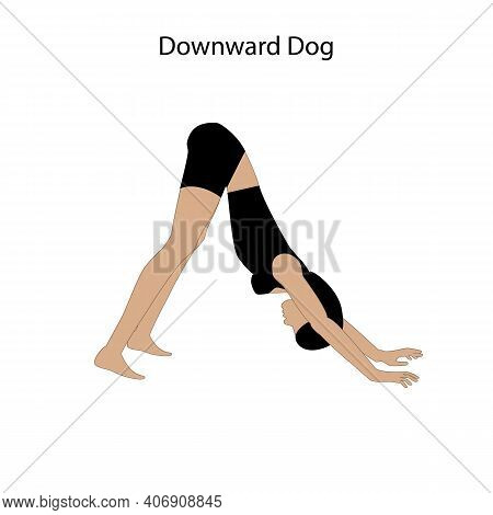 Downward Dog Yoga Workout Silhouette. Healthy Lifestyle Vector Illustration