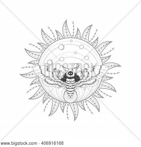 Vector Illustration With Hand Drawn Dead Head Moth And Sacred Symbol On White Background. Abstract M