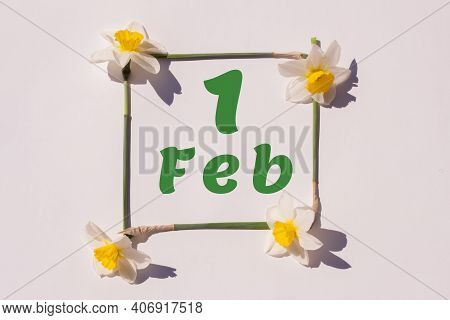 February 1th. Day 1 Of Month, Calendar Date. Frame From Flowers Of A Narcissus On A Light Background