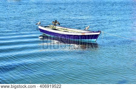 Old Blue And White Small Boat With Cormorant Drying Its Wings. Rias Baixas, Galicia, Spain.