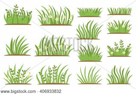 Green Grass Flat Icon Set. Isolated On White Background, Leaf Borders, Flower Elements, Nature Backg