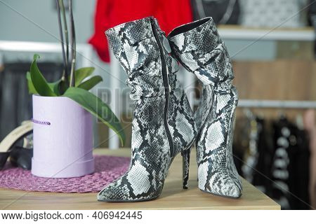 Icon Ankle Boots . Womens Snakeskin Cowboy Boots . Snake Cowboy Ankle Boots Pattern. Close View Of F