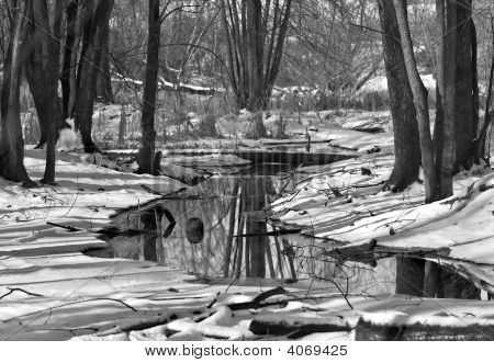 Urban Winter Stream
