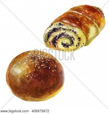 Watercolor Illustration Bun Set. Rich Pastries. Sesame Seed Bun. Poppy Seed Bun.