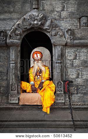 Sadhu At Pashupatinath Temple