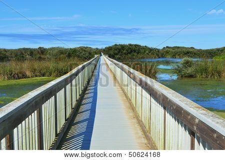 Bridge Over Oso Flaco Lake