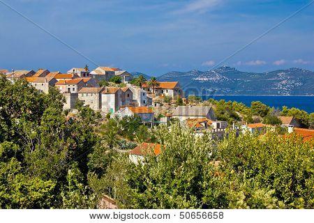 Adriatic Island of Iz village Dalmatia Croatia poster
