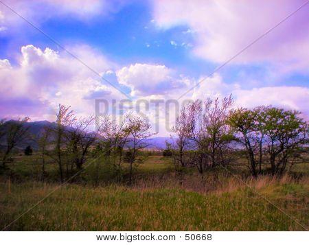 Dreamy Colorado