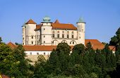 Old Renaissance Castle in Nowy Wisnicz, Poland poster