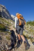 Young woman with dog on a sunny day hiking in high mountains poster