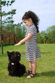 Adorable toddler girl training her scottish terrier. poster