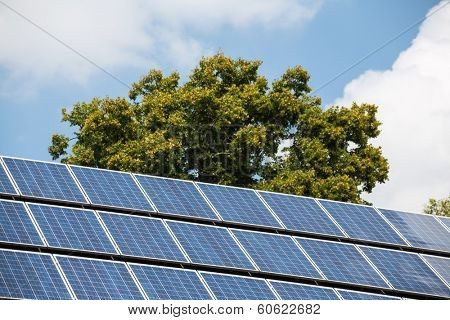 solar cells to generate electricity from solar energy. symbolic photo for alternative energy and environmental protection