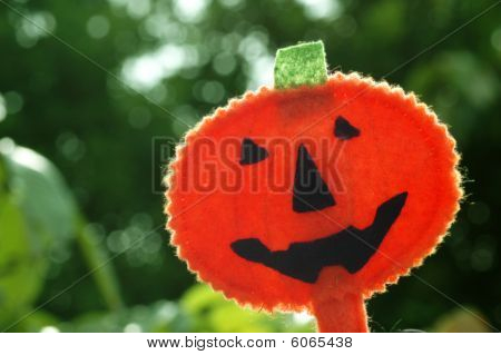 Halloween Pumpkin Jack O-lantern