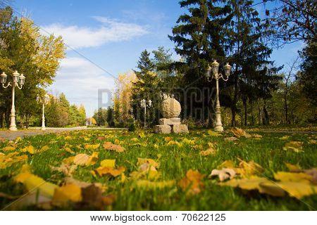 Autumn City Park - Stock Photos