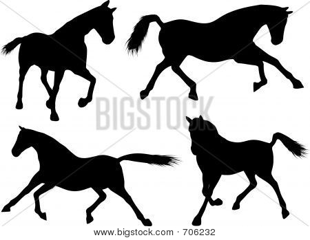 Various silhouettes of running horses poster