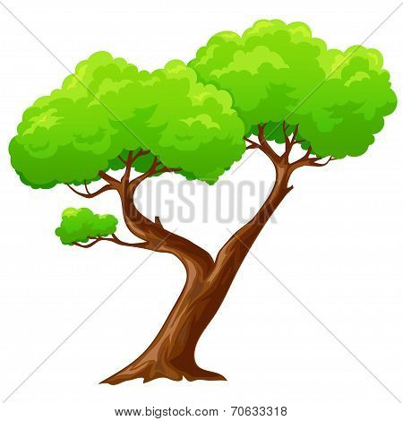 Cartoon Isolated Heart Shaped Tree On White Background