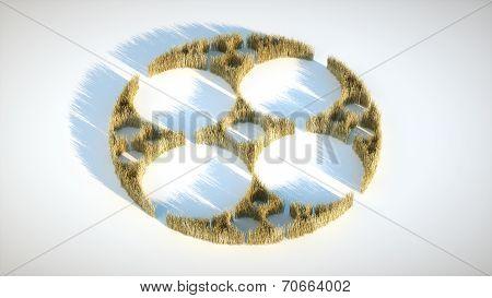 Image Crop Circle Fractal