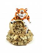 Tiger cub and riches on a white background. poster