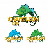 "An excellent logo template ""Chameleon Club"", best choice for music club, disco, etc... poster"