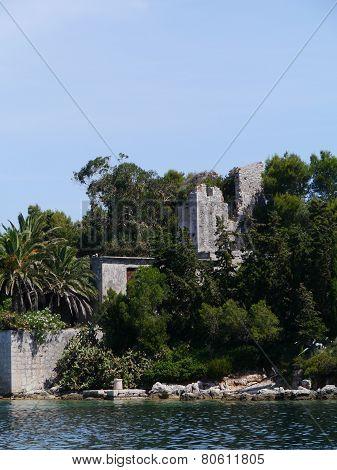 Subtropical trees around a castle