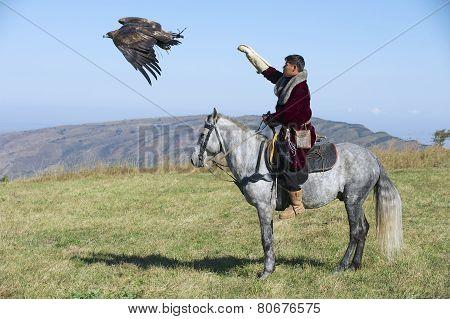 Mongolian man launches golden eagle to hunt circa Almaty, Kazakhstan.