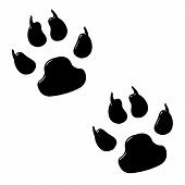 3d dog foot prints isolated in white poster