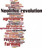Neolithic revolution word cloud concept. Vector illustration poster