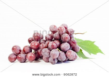 branch of red grape isolated on white background
