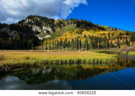 Mountain Fall Color