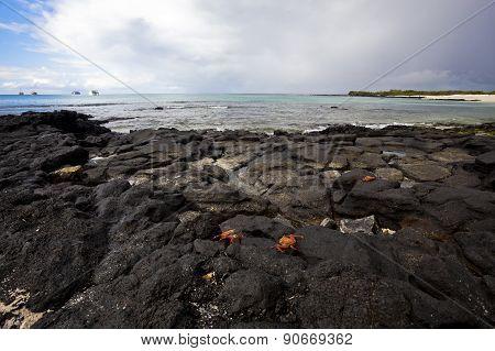 Las Bachas Beach