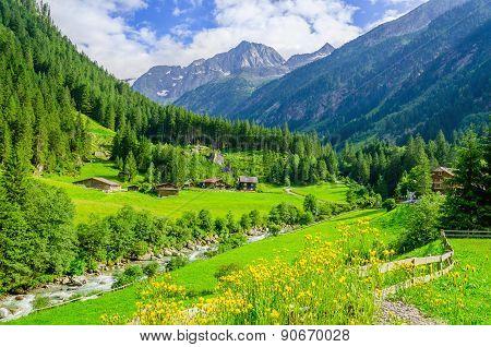 Green meadows, alpine cottages in Alps, Austria