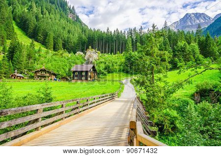 Country road to alpine houses, Zillertal, Austria