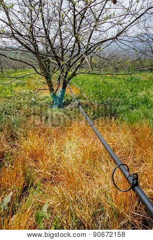 Pipe Of Irrigation System For Trees