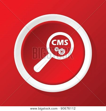 CMS search icon on red
