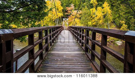 Autumn Hike In Michigan On The North Country Trail