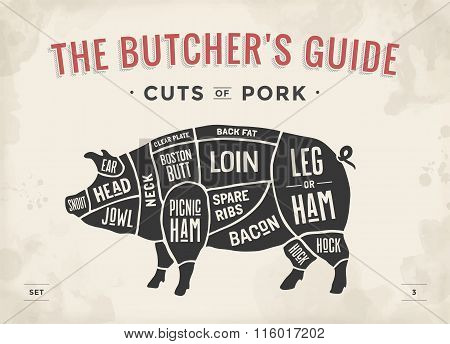 Cut Of Meat Set. Poster Butcher Diagram, Scheme And Guide - Pork. Vintage Typographic Hand-drawn. Ve