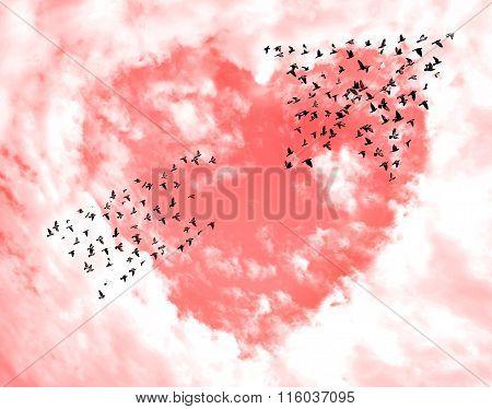 Birds arrow shape on sky and clouds heart shape