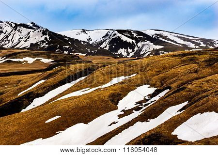 Grassy hills with snowy mountain peaks